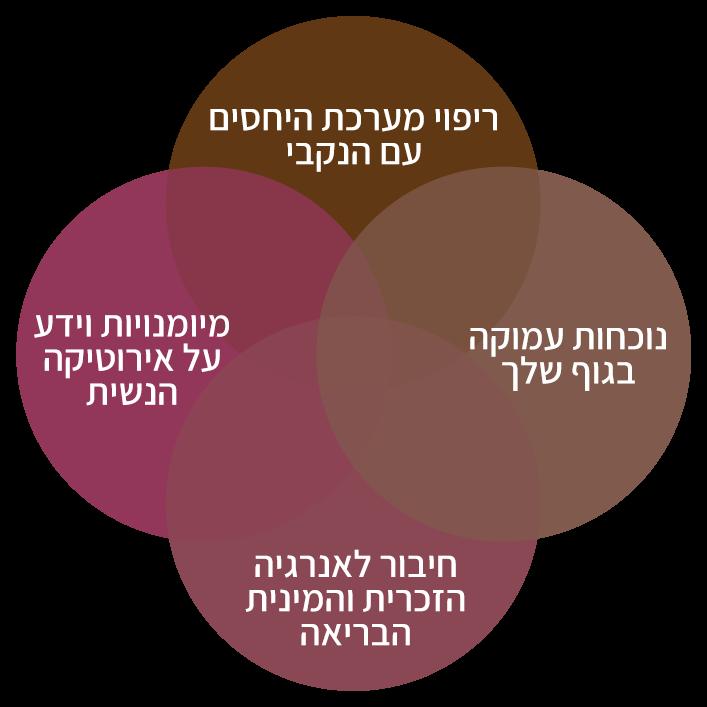 המרכיבים של גישת ׳לגעת אישה׳